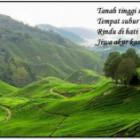 Ini Dia pantun alam indonesia