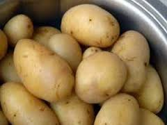 1 manfaat kentang rebus
