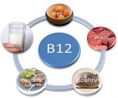 10 sumber vitamin b12
