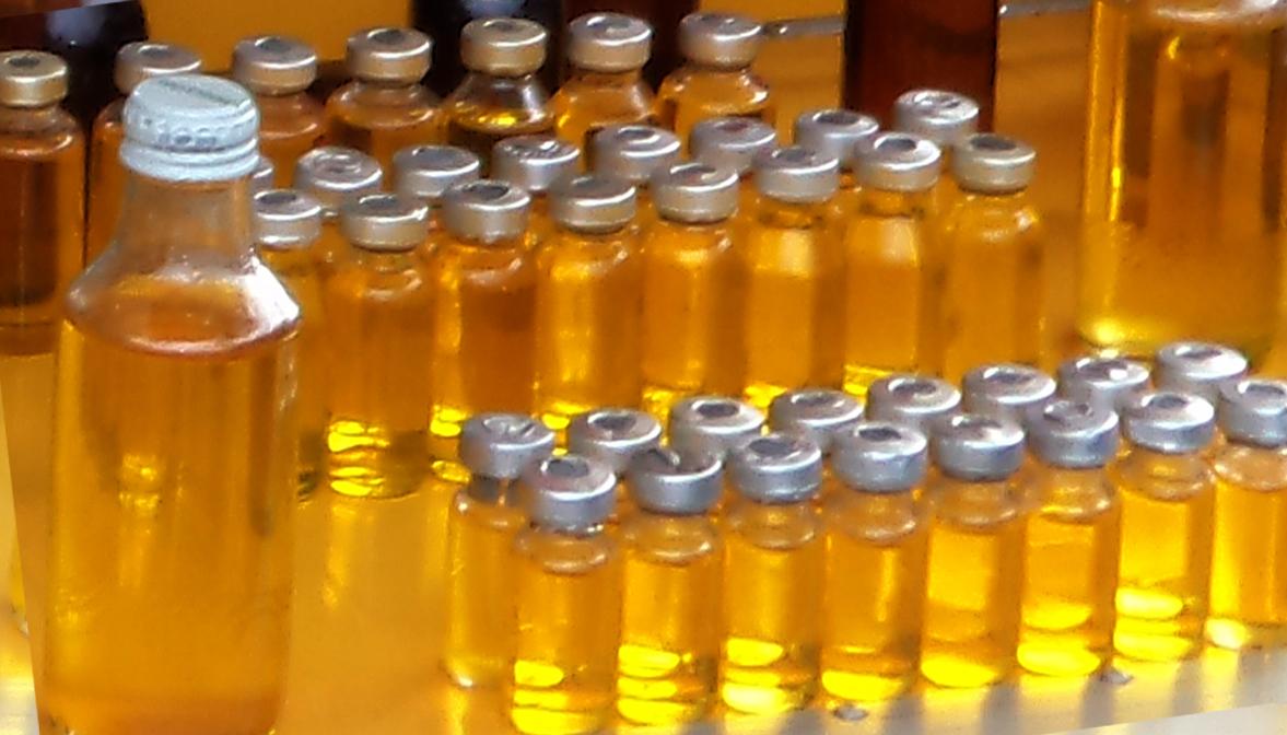 4 khasiat minyak lintah