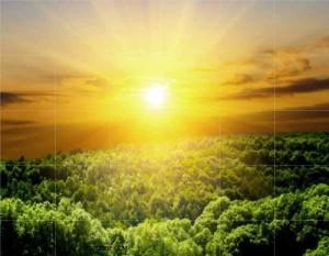 8 manfaat sinar matahari