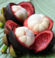 4 khasiat buah manggis