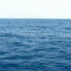 ini dia manfaat laut