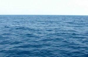 7 manfaat laut