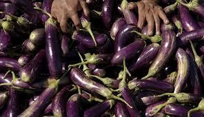 9 manfaat terong ungu