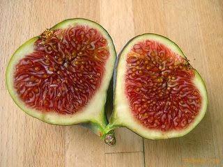1 khasiat buah tin