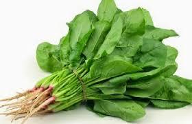 3 manfaat sayur bayam