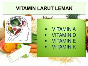 6 vitamin larut lemak
