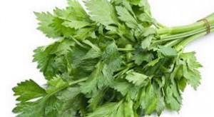 7 khasiat daun seledri