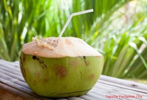9 manfaat kelapa hijau