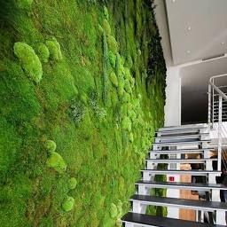 1M*1M Square Artificial Plant Lawn Home Simulation Plant inside Artificial Plants For Living Room