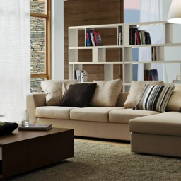 Living-Sofas with 2 Sofas In Living Room